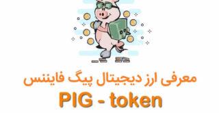 ارز دیجیتال pig